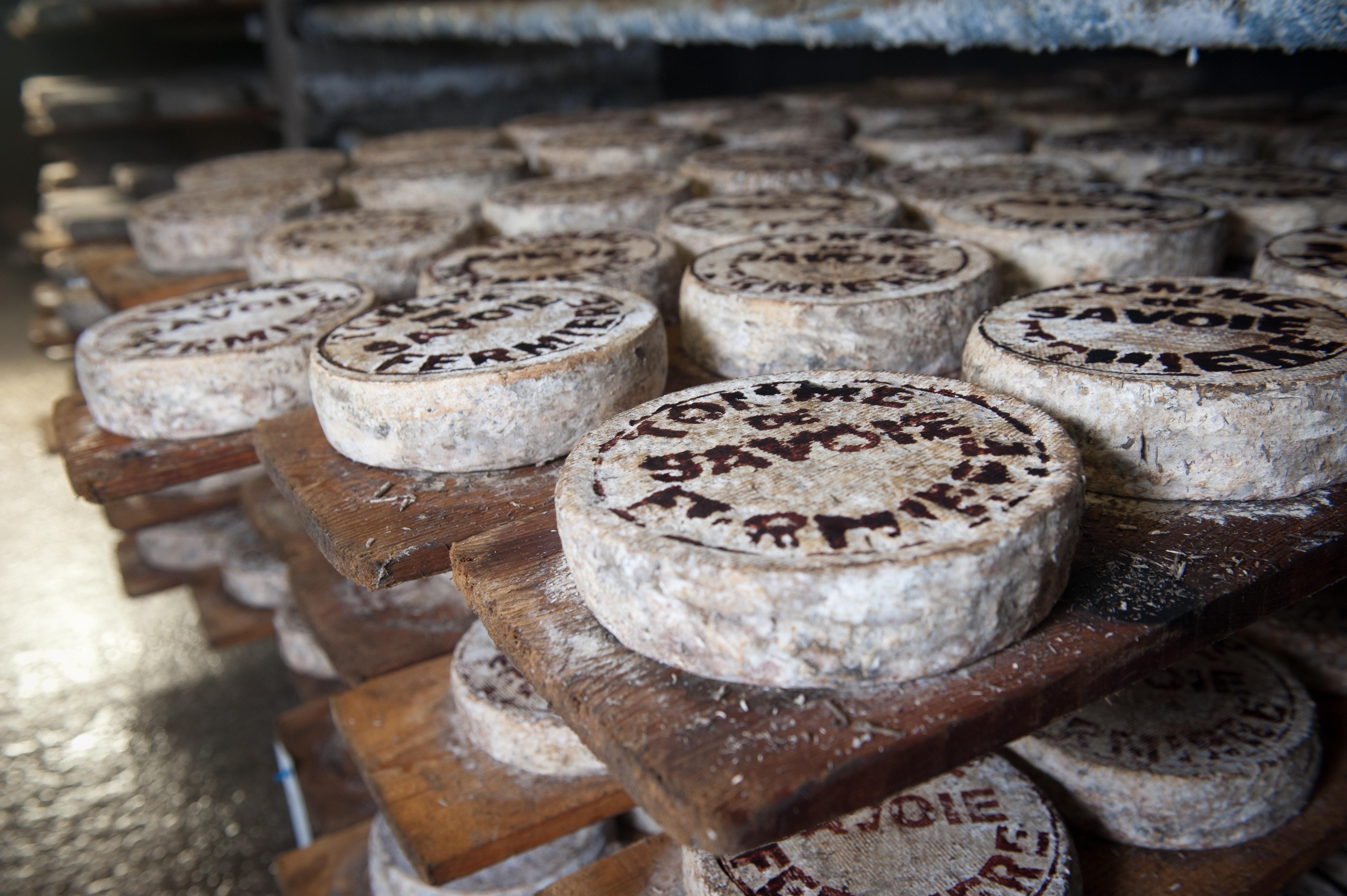 Understanding Mold on Cheese & Salami