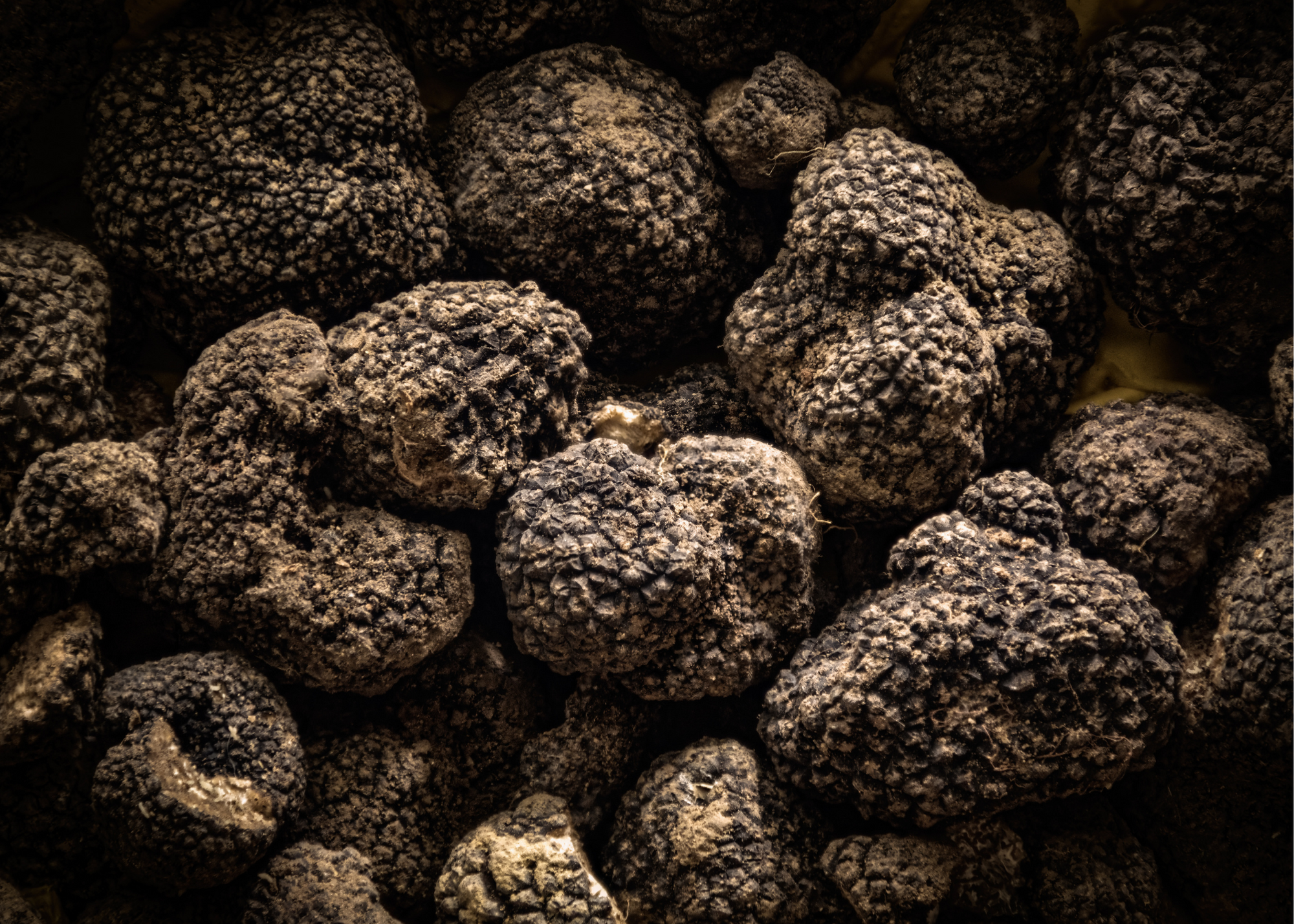 Comfort me with Truffles